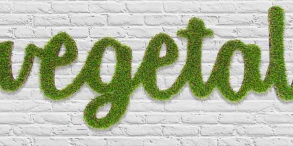 Logo Vegetal Sintético